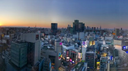 Tokyo Stores: The Capital of Shopping