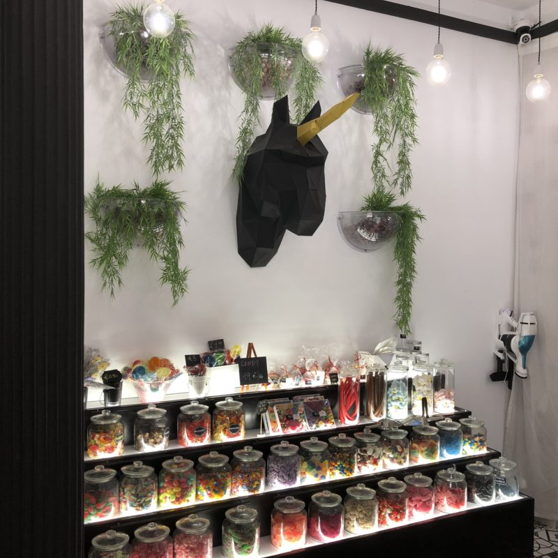 A black cardboard unicorn head between hanging plants on a wall above a goods board