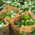 Basilikum von der Dachfarm des REWE Green Building Marktes