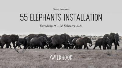Eine Herde Elefanten ziehen durch die Savanne