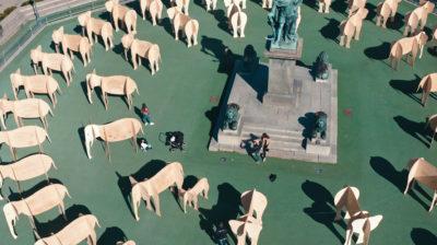Auf einem öffentlichen Platz stehen ganz viele Elefantenskulpturen um ein Denkmal herum