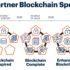 Graphic about the Gartner blockchain spectrum; copyright: Gartner