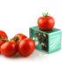 Tomaten und ein Mini-Computer; copyright: Fraunhofer IOSB