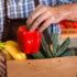 Verkäufer in Schürze legt Einkäufe in einem Paket; copyright: PantherMedia / Sergiy Tryapitsyn