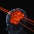 Getriebe mit Zahnrädern in einem virtuellen Kopf; copyright: panthermedia.net/Kiyoshi Takahase Segundo