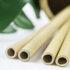 Nahaufnahme Bambushalme mit grünen Blättern im Hintergrund