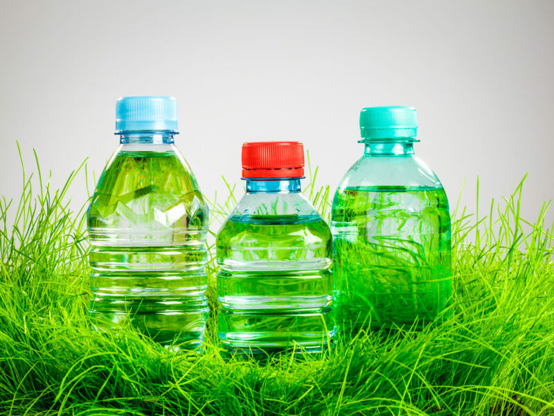 Grass replaces plastic in take-away food packaging